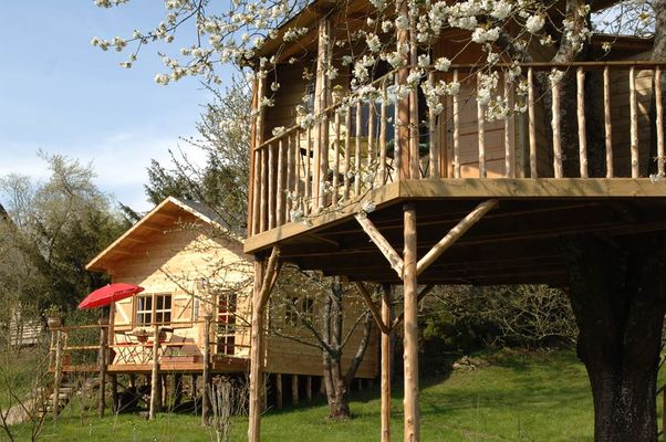 Cabane dans l'arbre