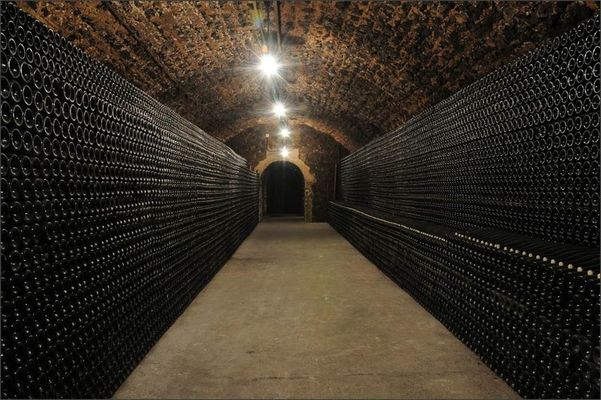 Champagne Gardet - Cave