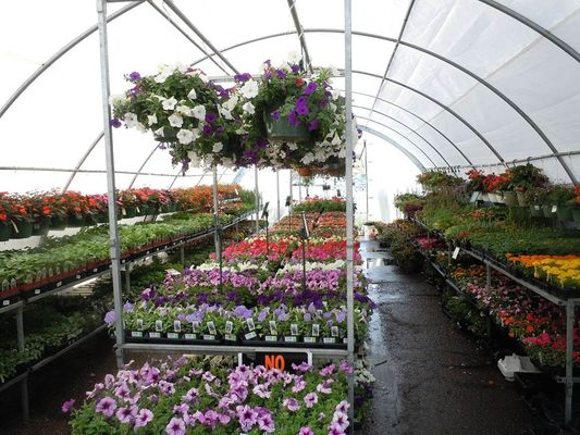 Les floralies givetoises
