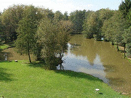 vue haute étang