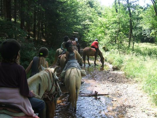 Relais Equestre des Récolets