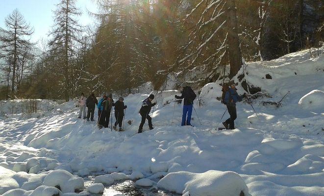 Himal hiver