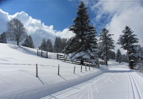 piste ski de fond saleve