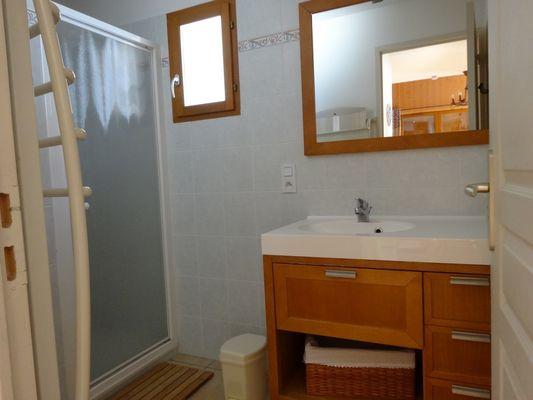 Salle d'eau Location Meublé Le Chastelas Chaillol