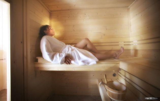 champagne 52 langres hotel la poste sauna.