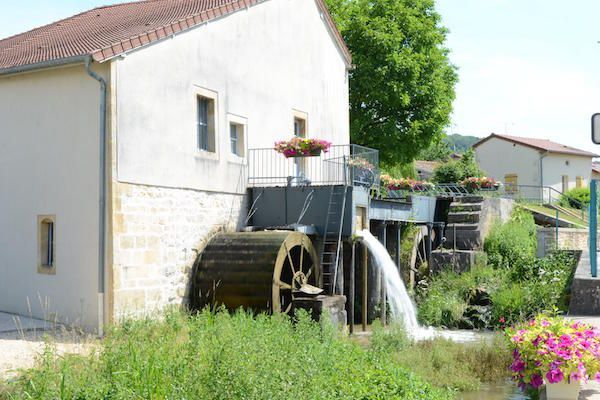 champagne 52 poissons le moulin.