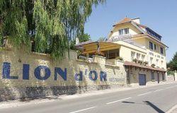 VILLA-HOTEL LE LION D'OR