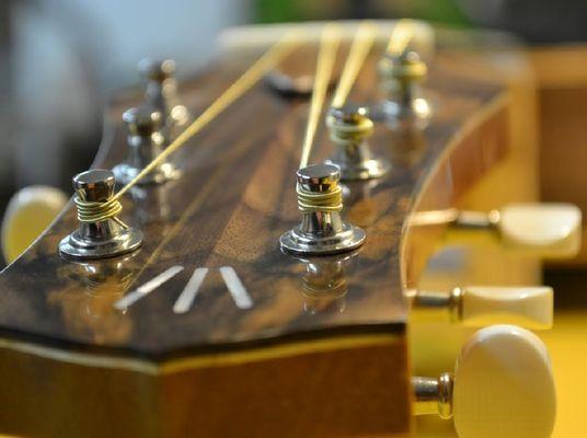 Michel CASSAN - Luthier