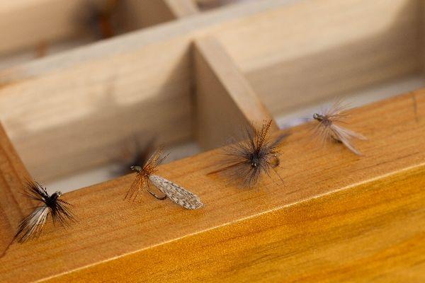 Pêche à la mouche au Fouet