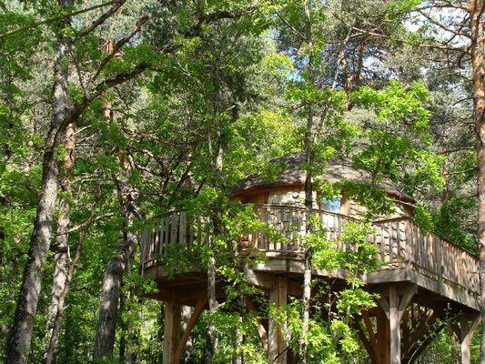 Cabane de Lily - Cabane perchée avec Spa près de Millau