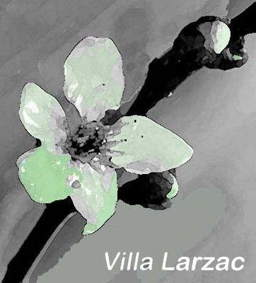 logo Villa Larzac