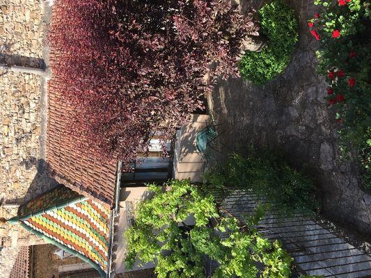Vu depuis l'appartement sur le jardin arboré du propriétaire