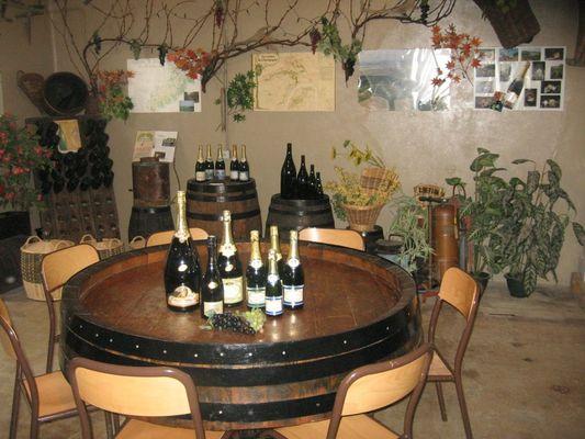 champagne 52 colombey terroir champagne peligri mdt52 082.