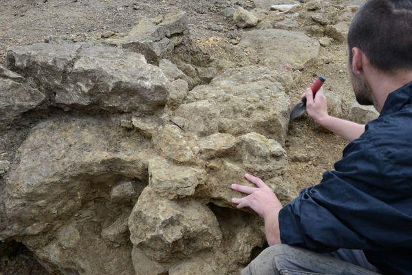 champagne 52 saint dizier vestiges site des crassees fouilles archeo phl 6727.