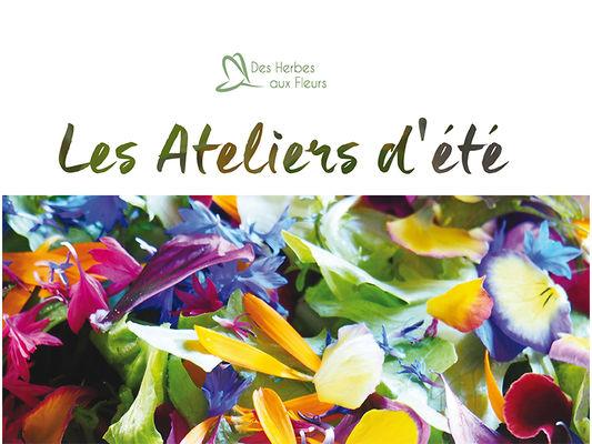 A3-HerbesAuxFleurs-ete2019