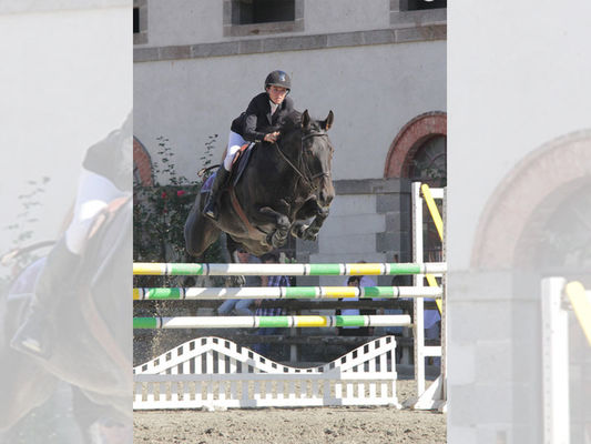 Centre Equestre de La Gacilly 2, La Gacilly, Destination Brocéliande, Bretagne