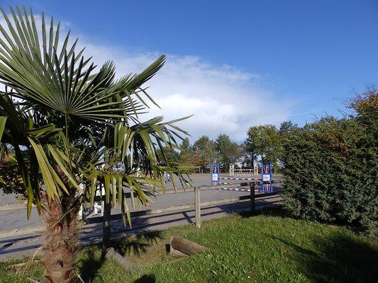 Centre équestre au lac de Trémelin à Iffendic (3)