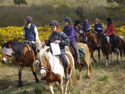 Ferme équestre Les Korrigans - La Croix-Helléan - Morbihan - Bretagne