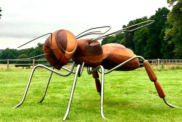 Insect_inside_Jardins de Bro_2020_fourmivolante_tousdroitsreserves