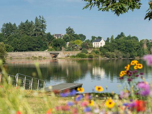 Lac au Duc - fleurs - été - Ploërmel - Brocéliande - Bretagne