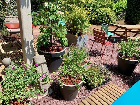 cote-jardin-maison-des-legendes-paimpont---2-2