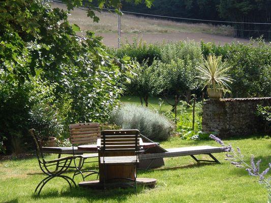 jardin vue pommiers