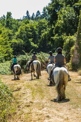 528171_balade_cheval