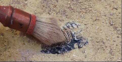 618367_apprenti_paleontologue