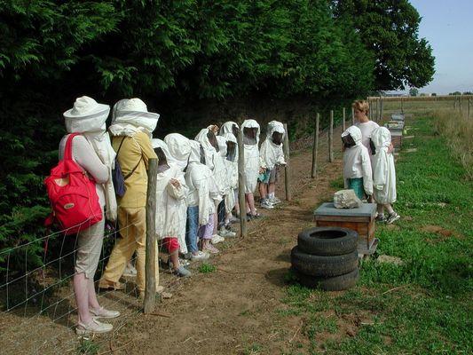 DEG53-la-ferme-des-abeilles-2