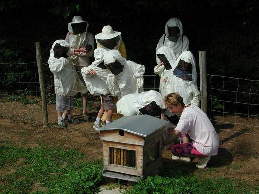DEG53-la-ferme-des-abeilles-4