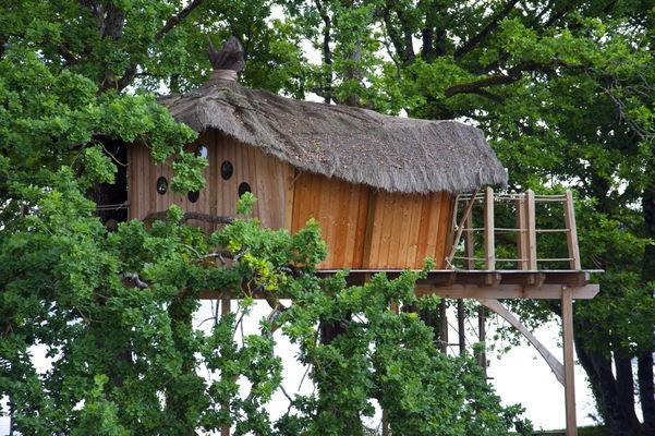HLO53 - Cabane dans les arbres Gué de Selle