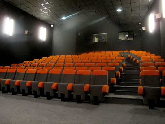 LOI-cinema-le-palace-3