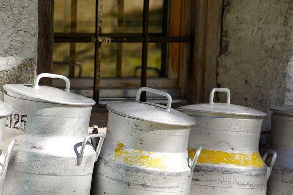 Produits laitiers Lait Yaourt