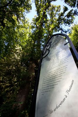 arboretum-de-pontmain-pontmain-53-pcu (1)