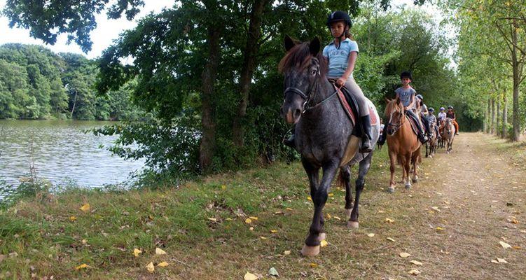 centre-equestre-ambrieres-les-vallees-53-asc-4