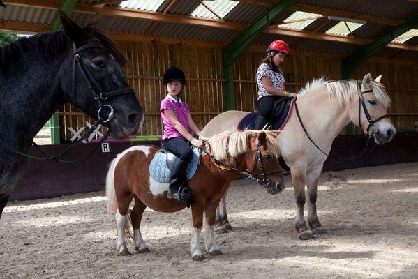 centre-equestre-ambrieres-les-vallees-53-asc-2