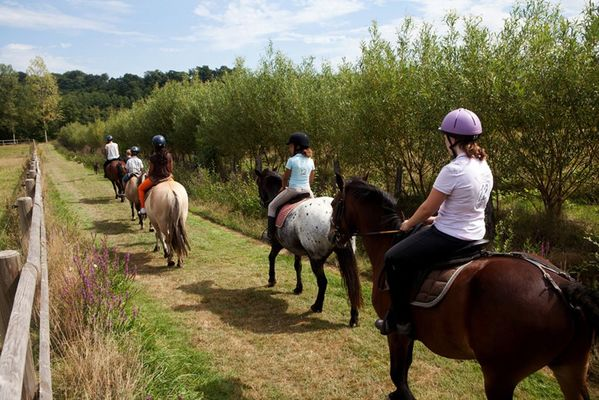centre-equestre-ambrieres-les-vallees-53-asc-3