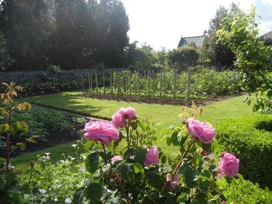 jardin de clivoy2