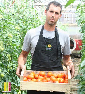 producteur maraicher horticulteur légumes fleurs 53 Mayenne vente directe - Brice MARSOLLIER