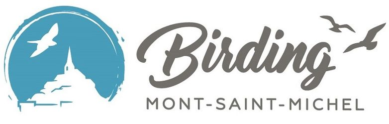 Birding Msm