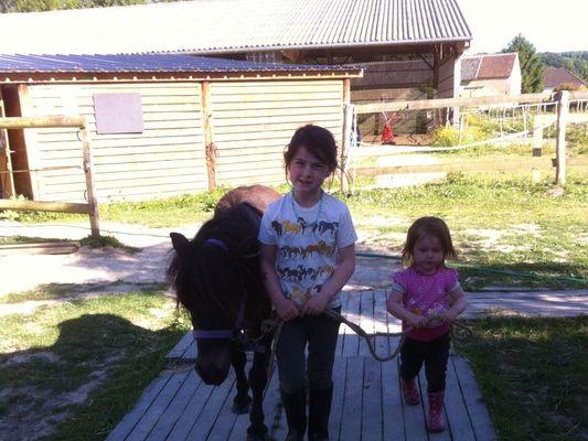 Centre Equestre la Chapelle Montligeon