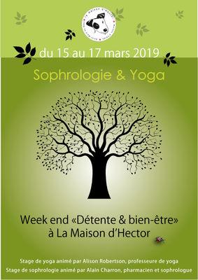 Yoga-Maison d'HEctor-printemps-2019-(3)