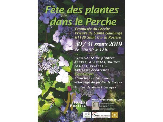 Fête des plantes dans le Perche - St Cyr la Rosière