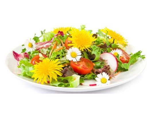 fleurs_comestibles-800