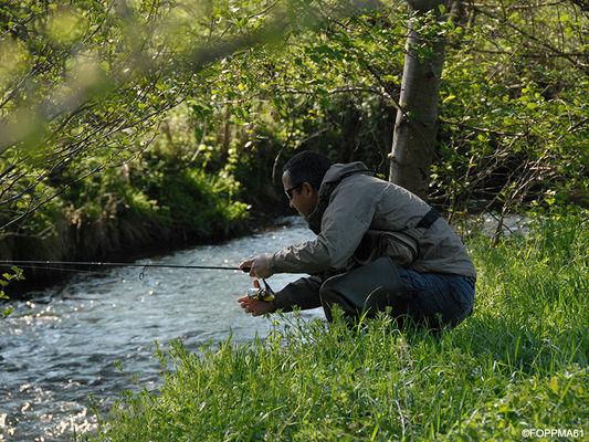 La Pêche dans l'Orne