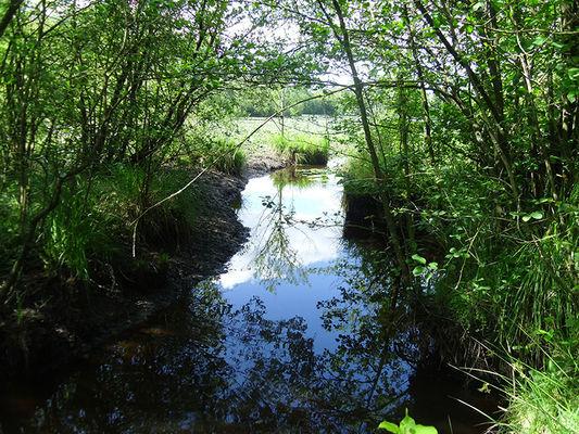Réserve naturelle régionale de Bresolettes