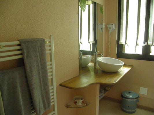 3.salle douche coueyla
