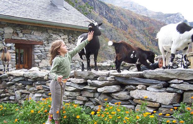 CAUSSIEU Francis  Grange 6 pers -  jardin chèvres