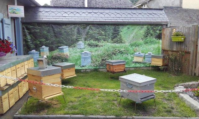 DEGMIP065V5006V5 - Le rucher arrensois - les ruches
