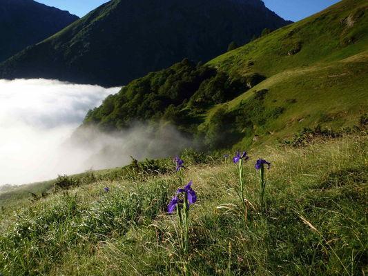 SIT-GrangeDuPlan-HautesPyrenees (3)